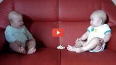 Vídeo para Rir  Conversa Entre Bebés