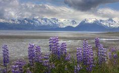 Alaska, would LOVE to visit