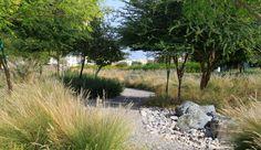 Wadi-Al-Azeiba-by-Atelier-Jacqueline-Osty-&-Associes «  Landscape Architecture Works | Landezine
