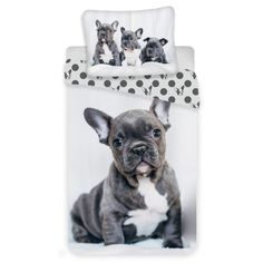 Dětské povlečení BULLDOG, psi na bílé, fototisk, bavlna hladká, 140x200cm + 70x90cm Duvet Cover Sizes, Duvet Covers, Bullen, Single Duvet Cover, Cotton Duvet, Africa, Ebay, Copyright, French Bulldogs