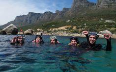 Sea Dives Underwater Photographer, Training Schedule, Open Water, Cape Town, Scuba Diving, Sea, Diving, Workout Schedule, Ocean
