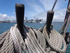 Maritime Museum Cruise, Auckland skyline