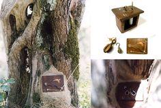 Olive tree camera obscura