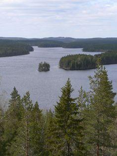 Lake Neitijärvi in the Ruunaa hiking area, seen from the observation tower atop the Huuhkajanvaara hill. Lieksa, Finland