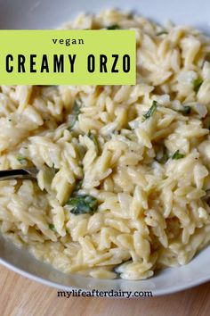 Creamy garlic orzo pasta made with a delicious garlic cream sauce is the ultimate comfort food! This dairy-free and vegan dish makes a delicious dinner and the perfect side to any meal! #dairyfree #vegan #sidedish Creamy Pasta Dishes, Pasta Side Dishes, Creamy Pasta Recipes, Pasta Sides, Dairy Free Orzo Recipes, Wheat Free Recipes, Vegan Recipes, Vegan Foods, Creamy Tomato Sauce
