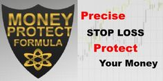 FOREX SPIDER Revolution Money Protect Formula (MPF)