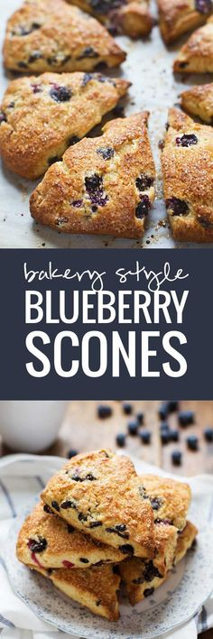 Bakery Style Blueberry Scones - crunchy sugary outside, juicy blueberries + flaky tender inside.