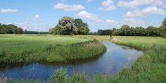 De Reest, rijke schakel tussen Drenthe en Overijssel