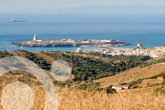 #Tarifa.  More information to plan your trip to #The_strait_of Gibraltar in www.qnatur.com