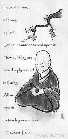 To still the mind -- gets students centered and quiet.  Brings peace to the classroom:de dejar descansar la conciencia sobre ella . cómo todavía son, cómo profundamente arraigada en el ser , permitir que la naturaleza enseña a su quietud