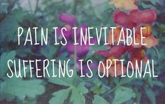 Pain / Suffering