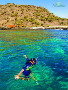 Snorkeling in Galapagos Inseln #snorkeling #solecu #ecuador #reisen #reisennachecuador #reisennachgalapagos #galapagos #allyouneedisecuador #abentuer #natur #purnatur #ecuadoramalavida