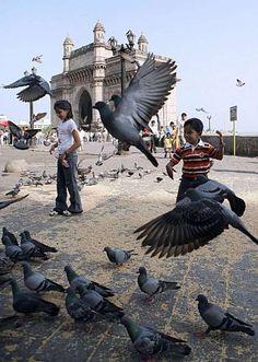 Gateway of India.