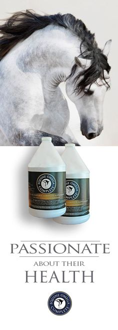 If you are a hunter jumper rider... We are driven by the desire to help horses be healthier and happier! Equine Omega Complete is comprised of all human grade ingredients. We utilize organic mechanically expelled soybean oil (not chemically extracted), all essential amino acids and have the tightest ratio of Omega 3's to Omega 6's on the market today. $59.95. Explore it. www.o3animalhealth.com