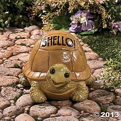 """Shello!"" Turtle Garden Statue  $20.00"