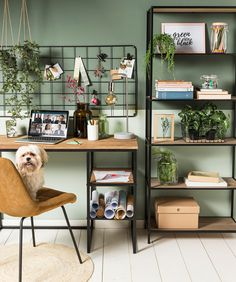 Home Office Setup, Building A New Home, Home, New Homes, Room Inspiration, House Interior, Bedroom Decor Lights, Office Interior Design, New Room