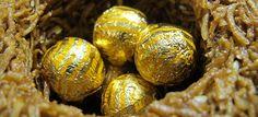 A nest of chocolate by 1CheekyChimp, via Flickr