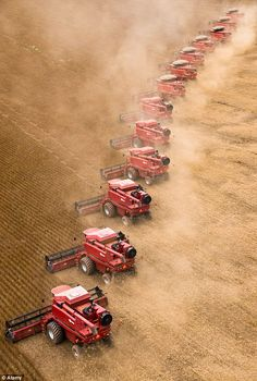 International Harvesters in a row