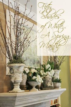 "When I saw some budding branches thrown out curbside,   I thought that a ""winter-going-into-spring"" mantle would   be as easy as sticki..."