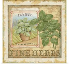 Fine Herbs I Photo Canvas Print | Great Big Canvas