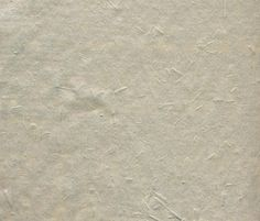 Polo Wallpaper by Agena | Wall coverings