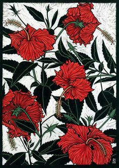 RED HIBISCUS 49 X 35 CM  EDITION OF 50 HAND COLOURED LINOCUT ON HANDMADE JAPANESE PAPER $850
