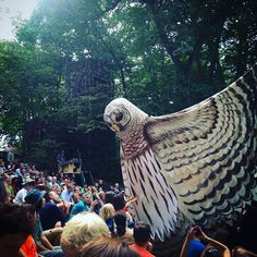 """Paperhand Puppet Intervention performs """"A Drop in the Bucket"""" photo by bellbottombleu"""