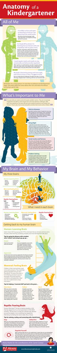 """The Anatomy of a Kindergartner"" (#INFOGRAPHIC)."