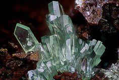 MandarinoiteLocality: El Dragón mine, Antonio Quijarro Province, Potosí Department, Bolivia Excellent group of light green crystals of mandarinoite. Photo Serge Lavarde