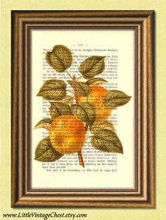 Items similar to GOLDEN APPLES - Dictionary art print - Vintage art book page print recycled - Art Print Dictionary on Etsy Golden Apple, Dictionary Art, Buy 1, Apples, Black Friday, Art Prints, Stuff To Buy, Free, Painting