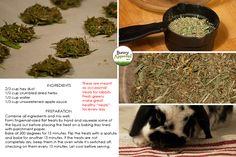 Bunny Treat Recipe with Leftover Hay
