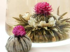 """Bouquet Teas truly a feast for your senses. Unwrapped from foil, the """"flowering"""" tea ball opens up to a bloom of premium white/green tea leaves Tea Quotes, Fruit Tea, Earl Grey Tea, Chamomile Tea, Flower Tea, Matcha Green Tea, Loose Leaf Tea, Tea Cups, Bouquet"""