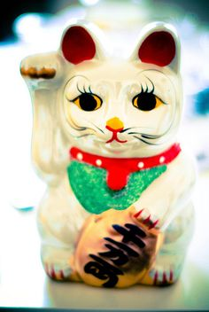 i want a lucky cat!