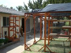 cat enclosure, the cats would LOVE this Wooden Cat House, Dog Enclosures, Cat Habitat, Outdoor Cat Enclosure, Cat Run, Outdoor Cats, Cattery, Cat Supplies, Catio