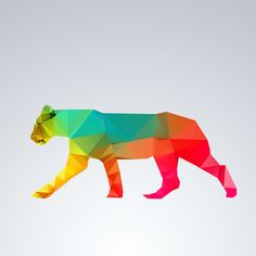 Visual Graphic - Glass Animals Series