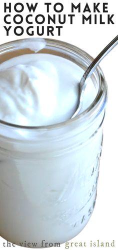 Coconut Yogurt Recipe, Homemade Yogurt Recipes, Make Coconut Milk, Coconut Milk Recipes, Ibd Diet, Sweet Recipes, Whole Food Recipes, Vegetarian Keto, Paleo
