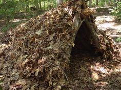 Brush Shelter http://conservativeprepper.com/blog/wp-content/uploads/2014/12/Brushshelter1.jpg