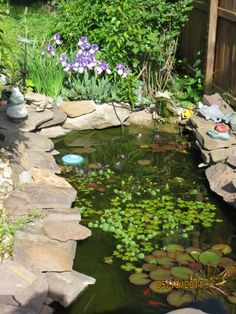 Water Garden Pond We Built At Old Place