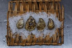 Oyster selection was the first course for last Sunday's French Country Supper