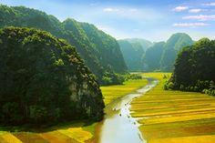 Ngo Dong river, #TamCoc, #NinhBinh, #Vietnam