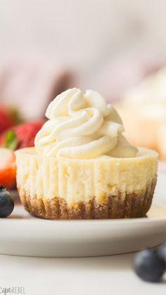 Mini Desserts, Mini Dessert Recipes, Gourmet Desserts, Easy Cake Recipes, Cookie Recipes, Blueberry Cupcake Recipes, Mini Cheesecakes, Individual Cheesecakes, Individual Desserts
