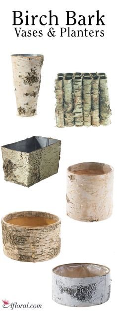 Birch Bark Vases and