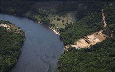 """航拍图展示亚马逊森林退化现状环保人士对亚马逊地区的监测显示,尽管阻止森林砍伐的努力一直在持续,但是贪婪的伐木工人依然在肆无忌惮地摧毁""""地球之肺"""",亚马逊地区的森林退化依旧十分严重。环保组织收集的航拍图展示了雨林面积的不断萎缩。  巴西绿色和平组织将收集到的证据递送给了有关机构,有望对照片中的地区发起突击检查。  绿色和平�"""
