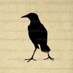 Printable Image Antique Bird Silhouette Digital Illustration Graphic Download Vintage Clip Art. Digital image download from antique artwork for making prints, fabric transfers, tote bags, and more. This graphic is high quality, large at 8½ x 11 inches. Transparent background version included with every digital image.