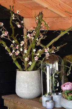 Mooie betonnen pot met decoratie takken en bloesem ( kunst bloemen) Makkelijk te maken en mooi, en bovendien makkelijk in onderhoud