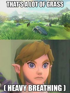 Must slice grass with sword and dull it also dye the master sword green so I have a matching set