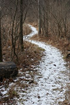 Powder Mill Park Taking a Hike | Pittsford NY | Black Thumb Gardener