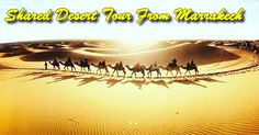Shared desert tour from Marrakech including camel trek in sand dunes and spend a night in desert camp in the Sahara desert.