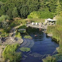 Une piscine écologique dans un paysage époustoufflant