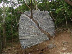 http://www.neolook.com/archives/2006041003c.jpg